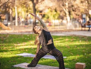 Online 200-Hour Yoga Teacher Training With 24 Live Sessions Over 3 Months