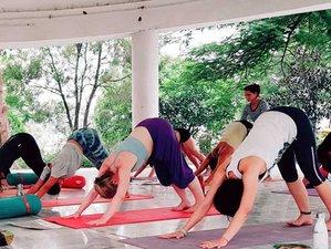 26 Days 200-Hour Hatha Ashtanga Yoga Teacher Training with Naturopathy Detox in Rishikesh, India