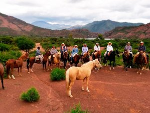 11 Day Horseback Riding Holiday from the Lerma Valley to the Calchaqui Valley