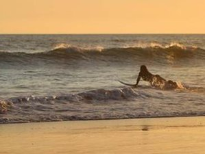 6 Days Bee Surf and Yoga Holiday in Bali