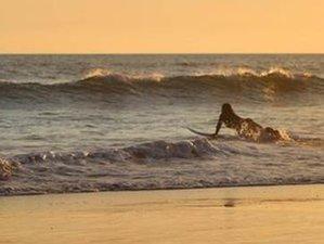 6 Tage Bee Surf und Yoga Urlaub in West Ubud, Bali