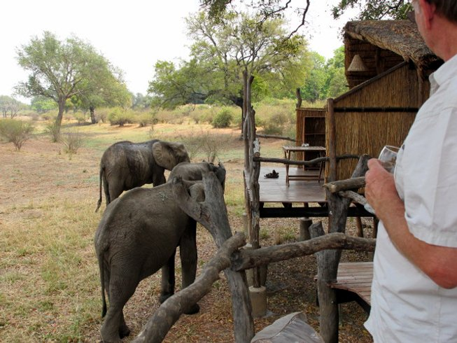 4 Days Valley of the Cats Adventure Safari in South Luangwa, Zambia