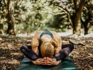 9 Day 50-Hour Yin and Breathwork Teacher Training in Lalendorf