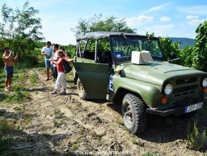 2 Day Tokaj Wine Region The Masters Tour in the Northern Hungary