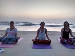7 Days Personalized Yoga Retreat in India