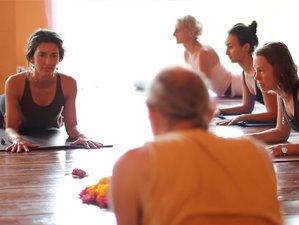 8 Days Magical Yoga Retreat India