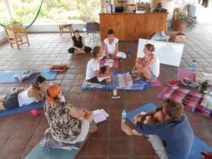 8 Days Intensive Meditation Retreat in Mexico