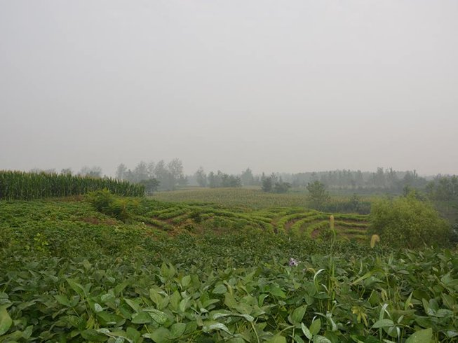 7 Days  Meditation&Tai Chi Retreat in China