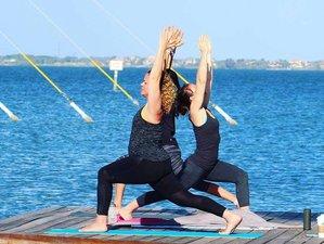 3 Days Self Love Meditation And Yoga Retreat Florida Usa Bookyogaretreats Com