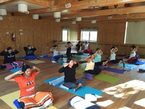 3 Days Summer Yoga Retreat in Washington, USA