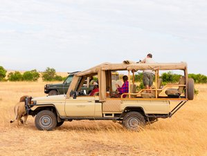 6 Days Serengeti Wildebeest Migration Trails, Ngorongoro Crater, and Lake Manyara Safari in Tanzania