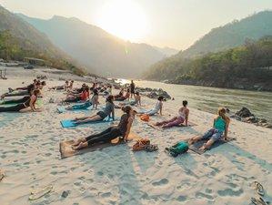 28 Days 200 Hours Hatha, Vinyasa Flow and Ashtanga Yoga Teacher Training Course in Rishikesh, India