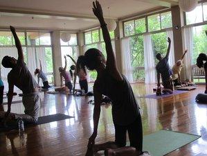 4 Day Yoga The Eternal Journey with Swami Jasraj in Sunshine Coast Hinterland Rainforest, Flaxton