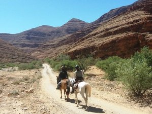 8 Day Tafraout Horse Riding Holiday in Morocco