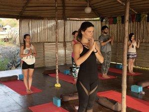 5 Days Fresh Beach Yoga Retreat in Goa, India