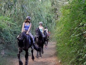 8 Day Historical Horse Riding Holiday in Llutxent, Valencian Community
