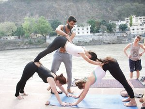 15 Tage 100-Stunden Spiritueller Yoga Retreat in Rishikesh, Indien