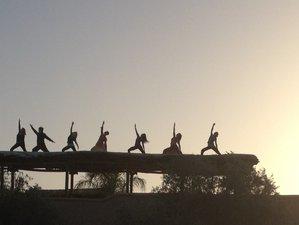 8 Days Digital Detox Yoga Retreat in France