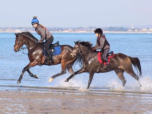 5 Day Self-Catering Horse Riding Holiday in the Isle of Wight