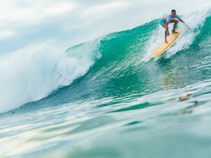 8 Days Guided Surf Camp in Puerto Viejo, Limón Area, Costa Rica