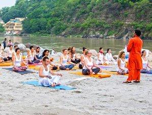 58 Tage 500-Stunden Yogalehrer Ausbildung in Goa, Indien