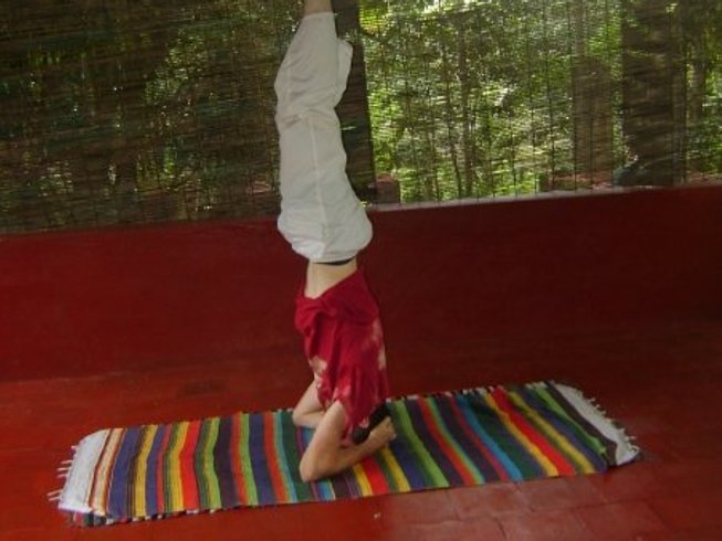 20 Days 200-Hour Yoga Teacher Training in Kerala, India