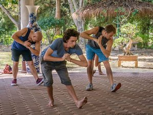 14 Days 5 Element and 8 Trigram Medical Qigong Level 1 and 2 Training in Chiang Mai, Thailand