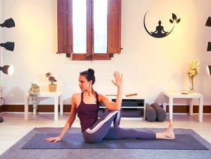 200-Stunden Werde ein Yogalehrer mit der Online Yogalehrer Ausbildung in deinem Tempo
