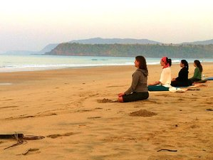 4-Daagse All-Inclusive Yoga Retraite in Goa, India