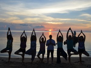 29 Days 200-Hour Hatha Vinyasa Yoga Teacher Training in Thailand