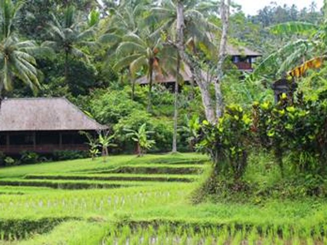 6 Days Divine Temple Bali Yoga Retreat in Indonesia