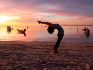 11 Days Fitness and Yoga Retreat in Koh Samui, Thailand