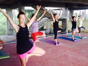 26 Days 200hr Yoga Teacher Training in Rishikesh, India