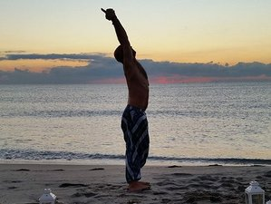 8 Day Revitalizing Meditation and Yoga Retreat in Boca Raton, Florida