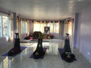 2 Day Rejuvenate and Refresh Yourself with Yoga, Healing, and Meditation in Kathmandu, Bagmati Zone