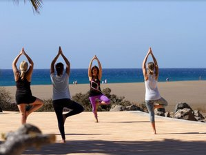 4 Day Surf, SUP, and Yoga Retreat in Lanzarote