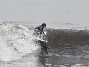 7 Days Surfing all Level in West Bali, Indonesia