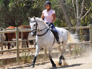 3 Days Unique Horse Riding Holiday in Centro, Portugal