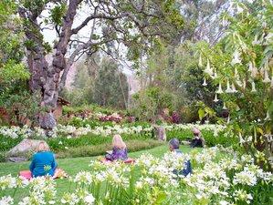 7 Day Sacred Valley Wellness Holiday in Urubamba, Cusco