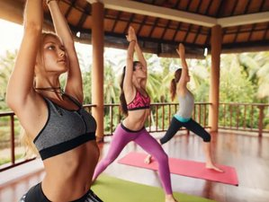 32 Day 300-Hour Yoga Teacher Training in Dübendorf