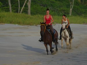 5 Day Beach and Horse Trekking Holiday in Samara, Guanacaste