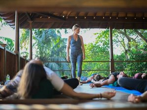 11 Day Wellness, Meditation, and Yoga Holiday in Hiriketiya, Southern Province