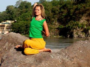 10 Tage Yoga und Meditation Urlaub mit Körperlichem und Geistigem Detox in Rishikesh, Indien