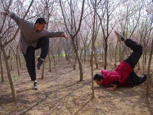 3 Month Chinese Martial Arts training in Tengzhou, Shandong