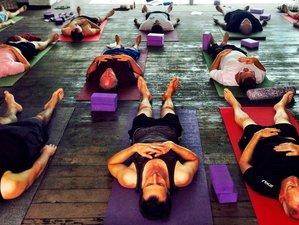 8 Days Men's Chakra Meditation and Yoga Retreat in Goa