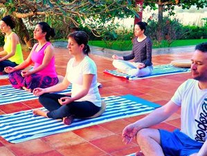 8 Days Reiki and Yoga Retreat in India