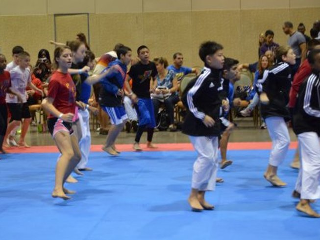 3 Days Intensive Taekwondo Training Camp in USA