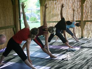 8 Days Dynamic Yoga Retreat Sri Lanka