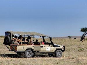 7 Days Photography Safari in Kenya