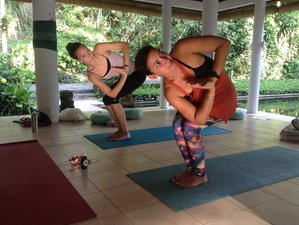 24-Daagse 200-urige Yoga Docententraining in Bali